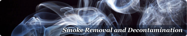 Tobacco Smoke & Nicotine Abatement